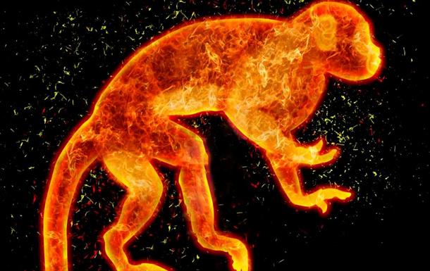 Восточный гороскоп 2016 – что принесет Огненная Обезьяна