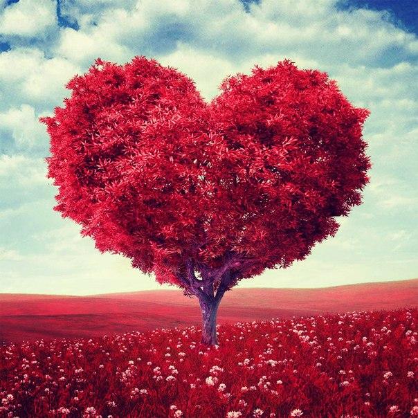 Любовная магия - ритуал для тех, кто ищет личное счастье